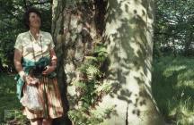 Hensol: Plant/tree & Landscape
