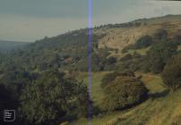 Pant: Landscape & Industry
