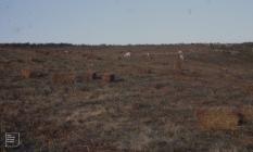 Eglywysilan: Landscape & Agriculture