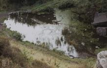 Glyncornel, Tonypandy: Landscape & water