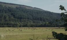 Resolven: Landscape & Agriculture