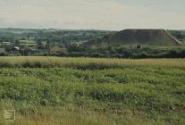 Llanharry: Landscape & Industry