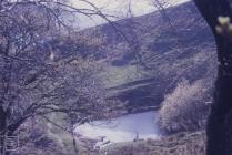 Trehafod, Rhondda: Landscape & water