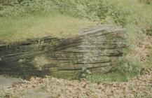 Glyncornel, Tonypandy: Geology & Landscape