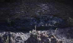 Blaencwm: Geology & Industry