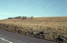 Treorchy: Landscape