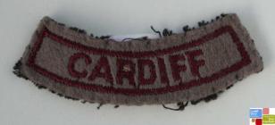 Women's Voluntary Service (WVS) Cardiff badge,...