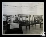 Photograph of Cardiff Naturalists' Society's...