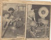 Photo: Newspaper article about the creamery, 1960s