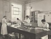 Photo: In the lab, Mair, centre, with...