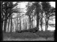 St Nicholas dolmen