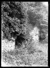 Caerwent town wall