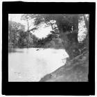 Margam Park, Monks Fishpond, Margam Abbey