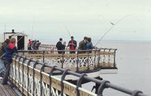 Angling off Penarth Pier