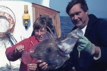 Record flatfish aboard the Endeavour