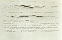 South Wales: Map/Figure & Geology