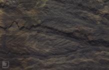 Rhondda: Geology & History/Archaeology