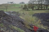 Mountain Ash: History/Archaeology & People