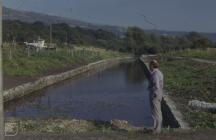 Aberdare: Landscape & People