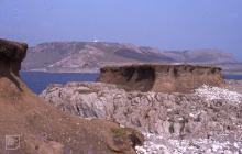Worm's Head, Rhossili: Landscape
