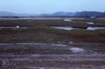 Baglan saltmarsh: Landscape