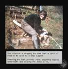 Photograph of a Cardiff Conservation Volunteer...