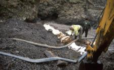 Cleaning crude oil off a Pembrokeshire beach...