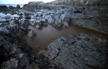 Crude oil filling rock pools at West Angle Bay...