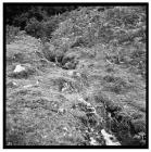 Dolaucothi gold mine