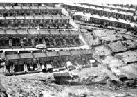 Brook and Beech Terrace, Pillipstown