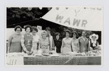 Merched y Wawr Clydach Branch at a Summer Fair