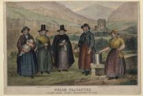 Welsh Costume: Welsh Peasantry, 1850