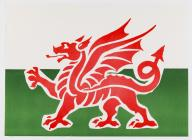 Nos Galan flag - Welsh Dragon, handed to crowds...