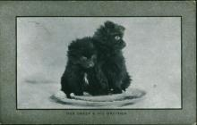 Postcard from George E. Thomas to his mother,...