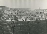 Construction of Penarth Docks