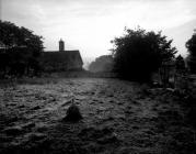 Llwyn-Ynn, Denbighshire 2010
