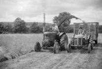 Field Marshall tractor with Silorater, 1954