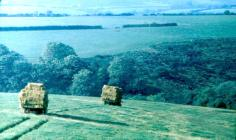 Carting Hay bales to homestead, 1968