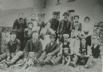 A shearing Party at Maesglas