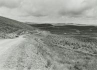 Forest Road in Twyi