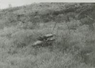 Remains at Drovers' Inn