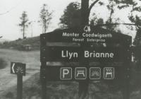 Llyn Brianne Picnic Site