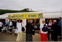 Eisteddfod Genedlaethol Llanelli a'r Cylch 2000