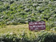 Anti-Rewilding / 'Cofiwch Dryweryn'...