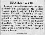 LLAWENYDD (1915)