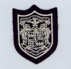 Llanrwst Grammar School Badge