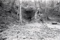 Entrance of the Rhiwgreiddyn quarry