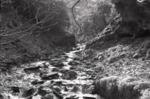 Stream below the Rhiwgreiddyn slate mill