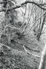Below the Rhiwgreiddyn Slate Mill