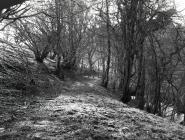 Cambria Wyn slate quarry. Ceinws/ Esgairgeiliog